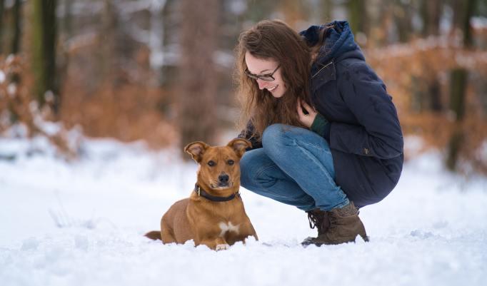 Hundeshooting mit Halter