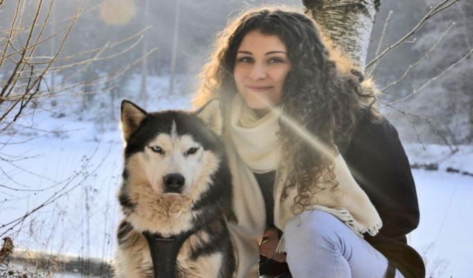 Fotoshoot mit Huskies
