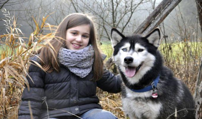 Fotoshooting mit Schlittenhund