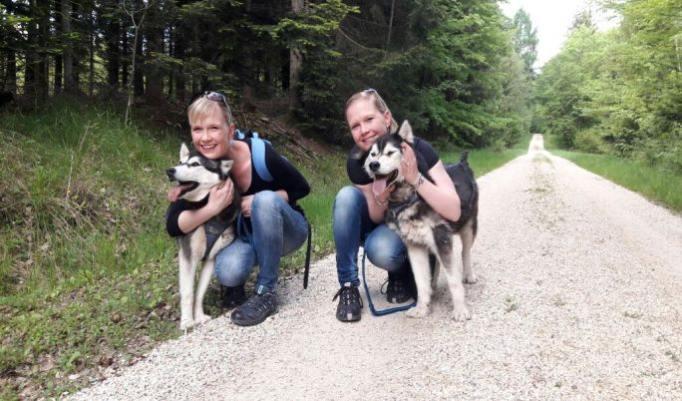 Kleine Husky Wanderung in Jagstzell