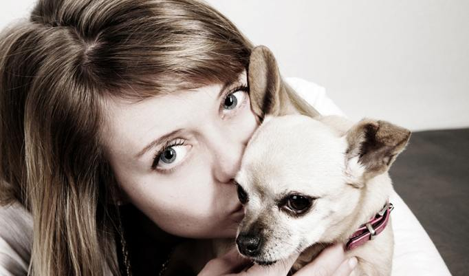 Gutschein für Tier Fotoshooting