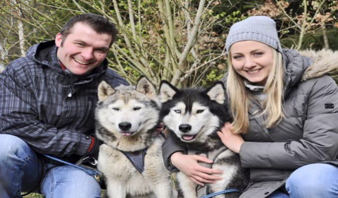 Familientag mit Huskies