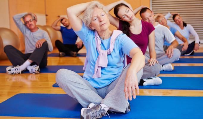 Wellness Yoga Kurs