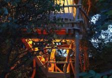 Übernachtung im Baumhaus