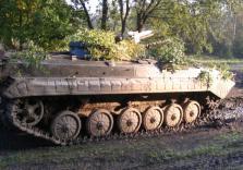 Kettenpanzer im Wald